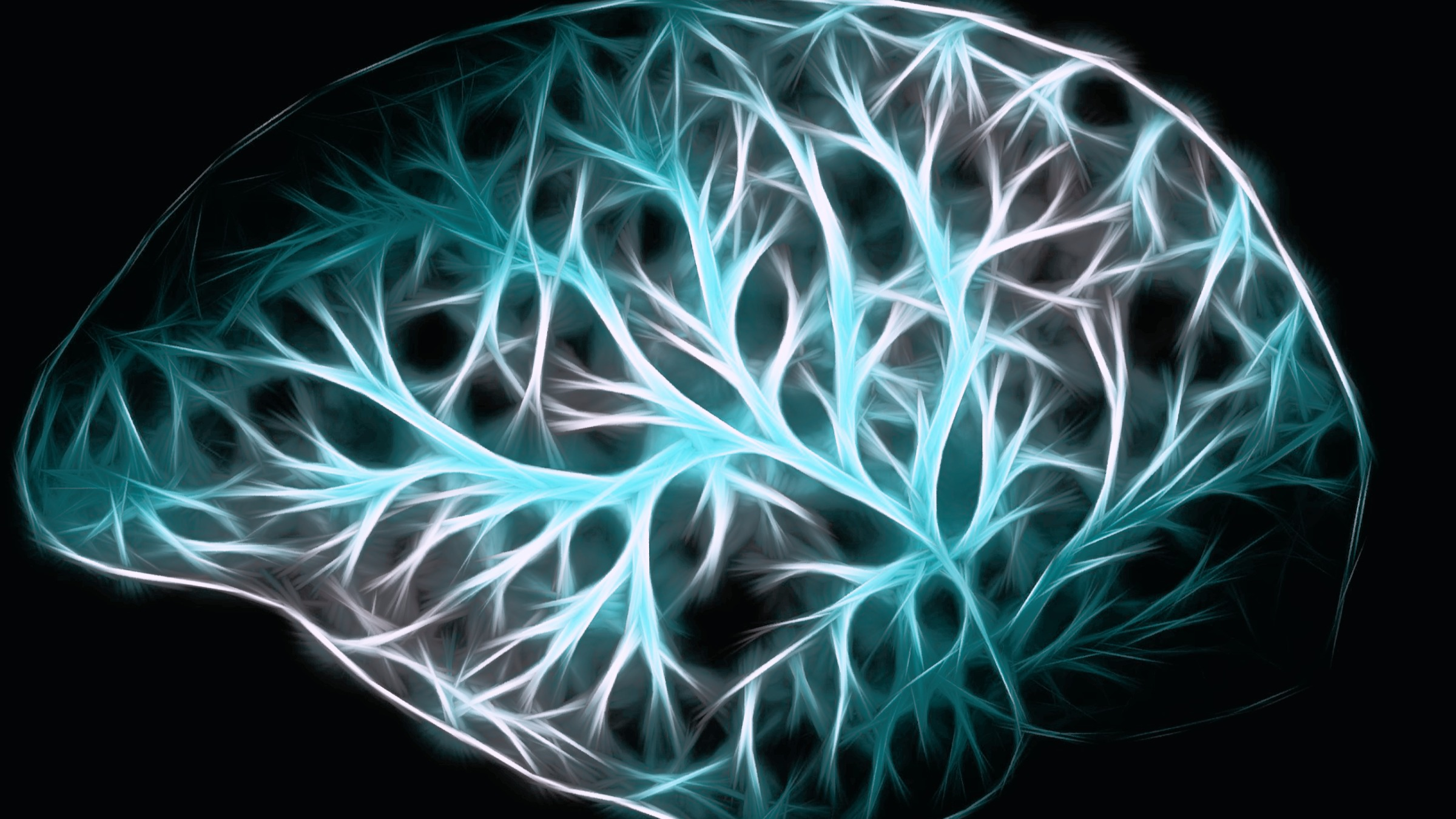 Mindfulness Training Alters Neural Circuits in the Brain!